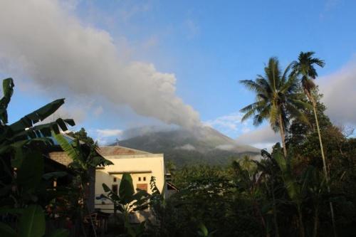バリ島で空港閉鎖したときの傾向と対策