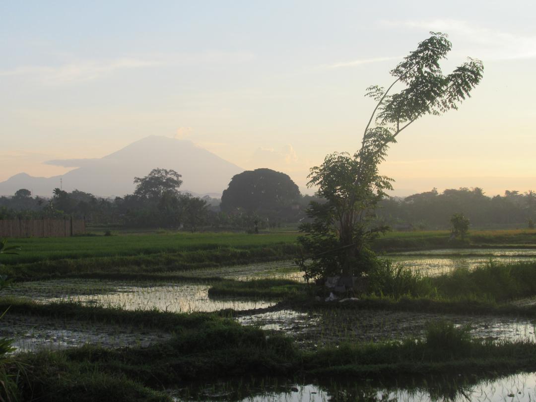バリに火山噴火が心配で旅行しない理由